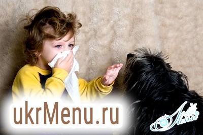 Алергія на шерсть тварин у дітей