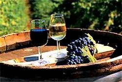 Домашнє вино з винограду рецепти в домашніх умовах