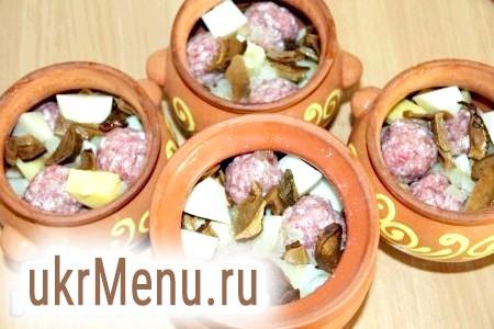 Фото - З фаршу сформувати фрикадельки. Покласти в горщики шарами: фрикадельки, нарізаний очищений картопля, обсмажену цибулю та гриби.