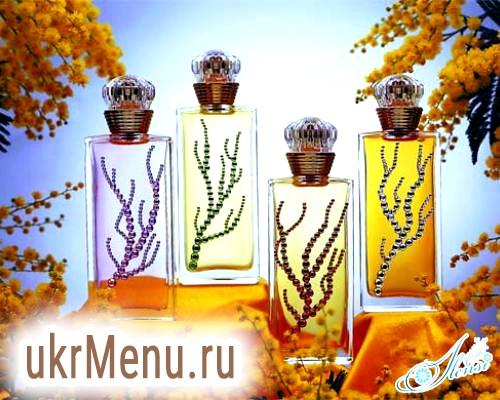 Ідеальні парфуми: як визначитися з вибором
