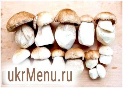 Як правильно варити білі гриби