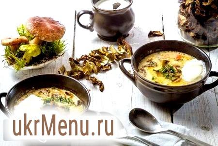 Як зварити суп із сушених грибів? кращі рецепти