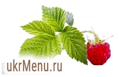 Листя малини: корисні властивості та протипоказання, як сушити і заварювати