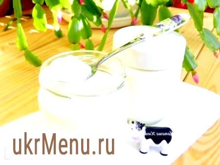 Приготування домашнього йогурту в йогуртниці