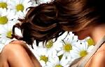 Ромашка для волосся, освітлення волосся ромашкою, ополіскування волосся відваром ромашки