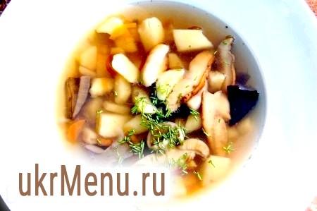 Суп зі свіжих грибів
