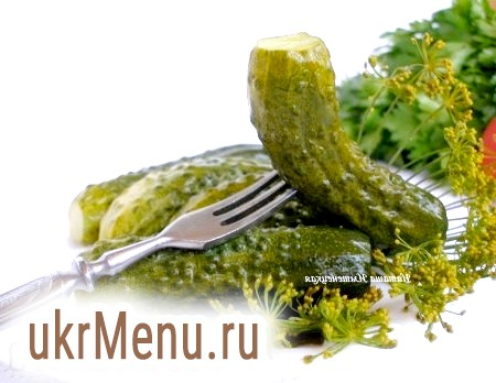 Як приготувати малосольні огірки