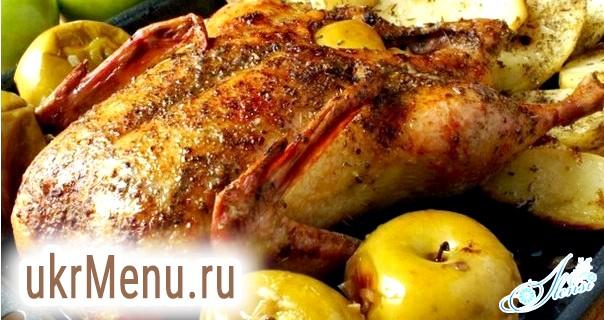 Основні рецепти запеченої качки з медом та яблуками